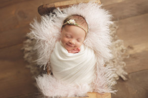 gaithersburg md newborn photographer